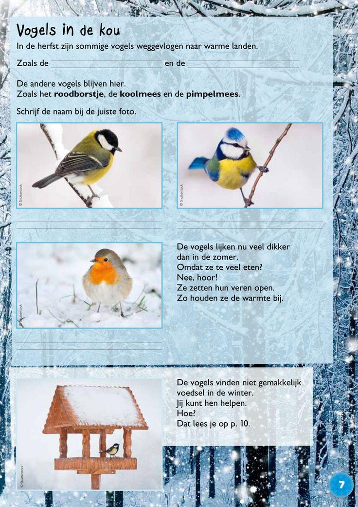 Wat doen dieren in de winter?2 @keireeen
