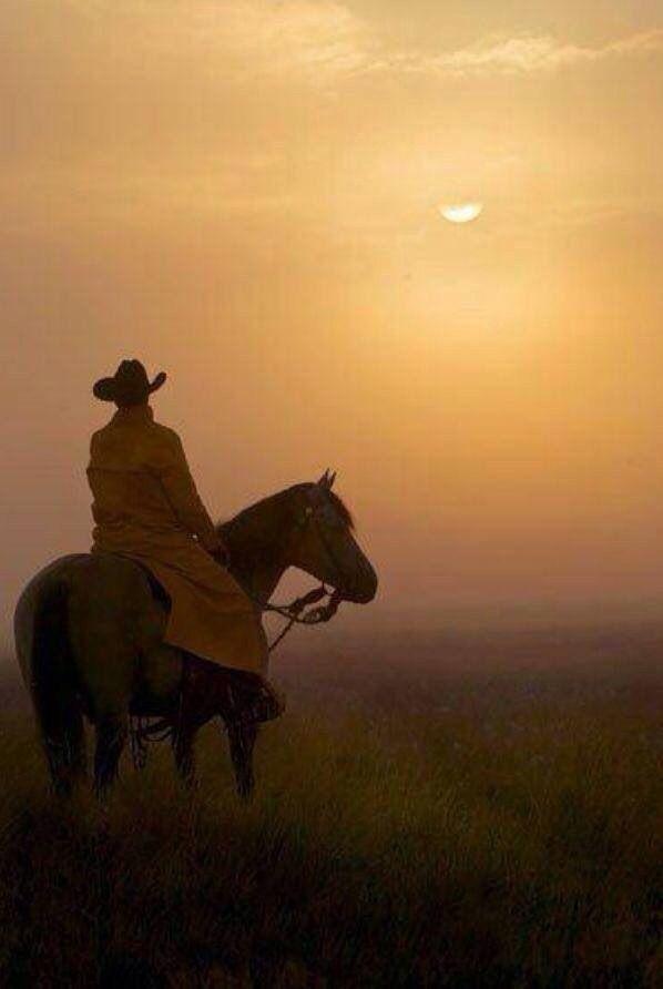 desperado | Ranch Life | Pinterest | Posts and Cowboys
