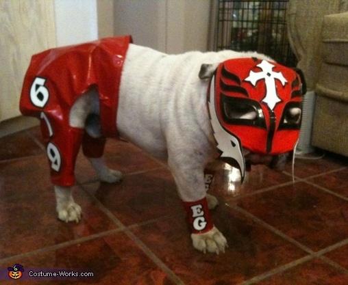 Rey Mysterio Costume - 2012 Halloween Costume Contest