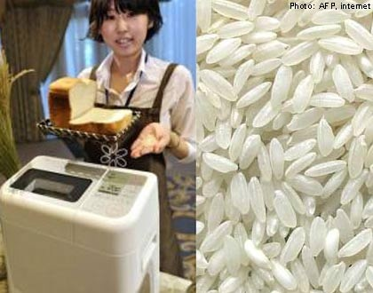 Soshiok.com - Sanyo launches first rice bread cooker