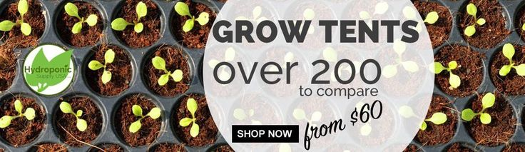 Best Grow Tent 2017 Compare the Best Grow Tents. Here is the best grow tent list with 100s reviews. Compare the best grow tent price from multiple sellers. Top grow tent brand. http://www.hydroponicsupplyusa.com/top-5-best-grow-tents/