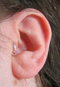 Tragus piercing, yes, I'm going to do it....