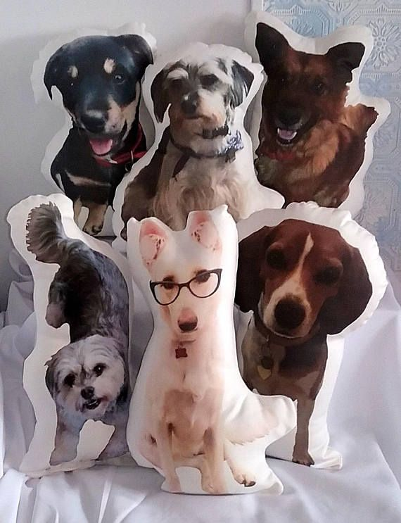 huggable pet photo pillow one or two