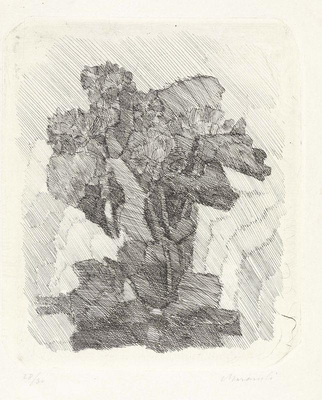 Giorgio Morandi - Gerani dentro un bicchiere - Acquaforte su rame, su carta India incollata, es. 28/30 - cm. 19,8x16,5 (lastra), cm. 32,8x24,7 (carta)
