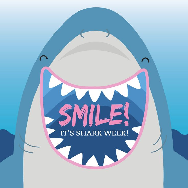 WE'RE TAKING A BITE out of Shark Week! Did you know that sharks have an average of 15 rows of teeth per jaw? Do you like to watch the shark week programming?  If you are tell us what show is your favorite.