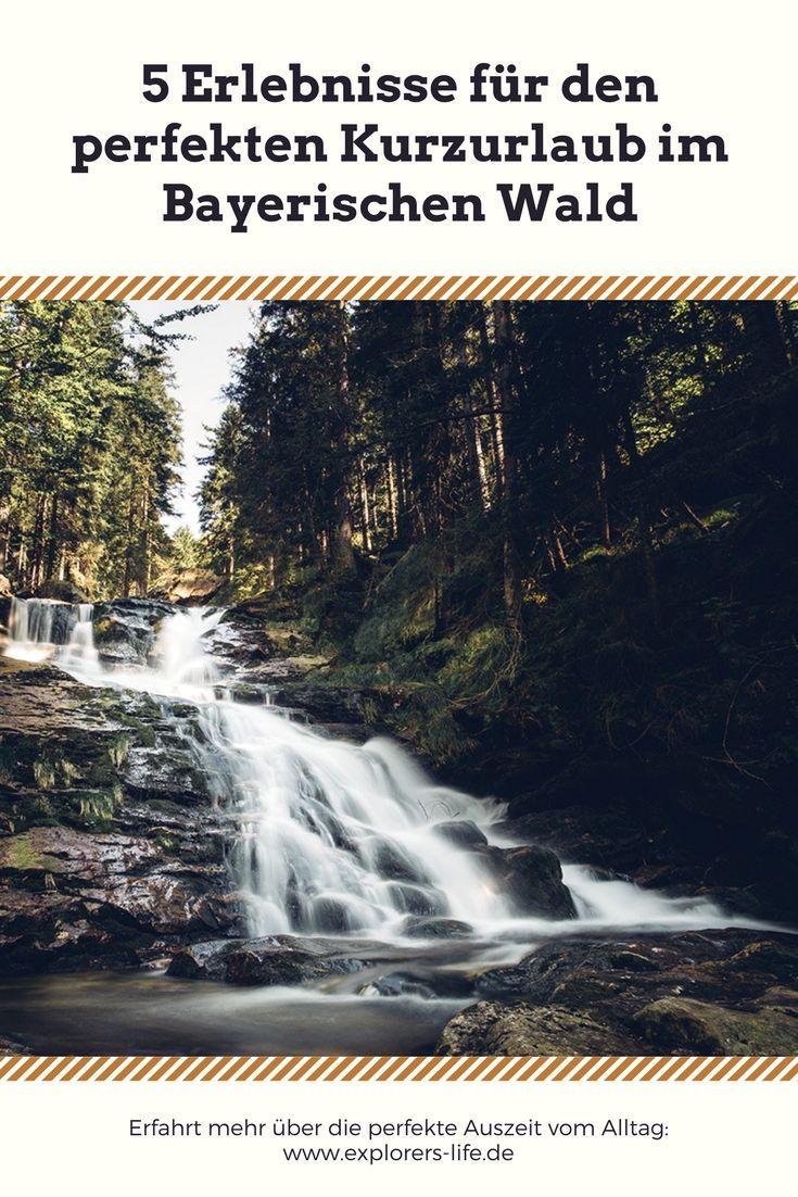 Mache deinen Kurzurlaub im Bayerischen Wald zum Highlight: Wasserfälle ✓ Atemberaubende Aussichten ✓ Baumwipfelpfad ✓ Hier erfährst du mehr!