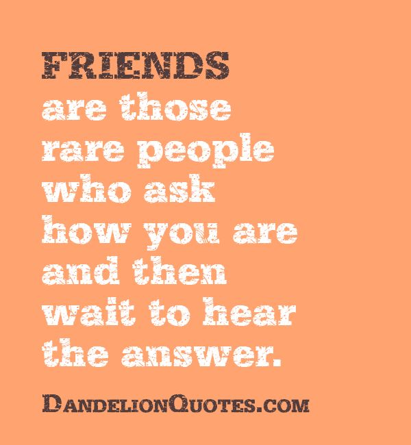 17 Best Images About Friendship Quotes On Pinterest
