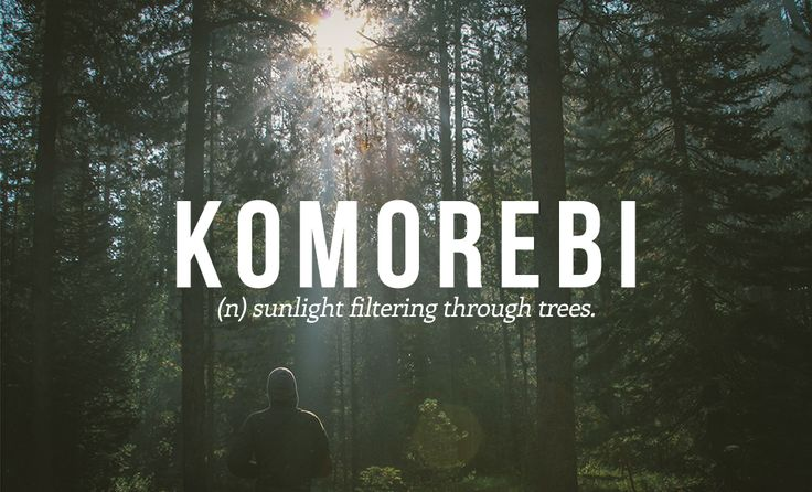 28 Beautiful Words The English Language Should Steal - This one is Japanese.                                                                                                                                                                                 More