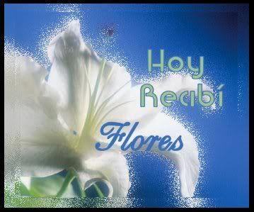 La hermosa creación de Dios: HOY RECIBÍ FLORES Y NO ES MI CUMPLEAÑOS...
