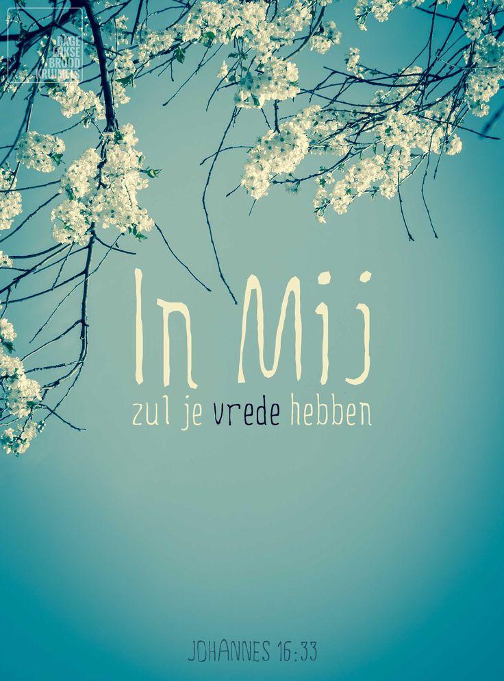 In Mij zul je vrede hebben. Johannes 16:33   http://www.dagelijksebroodkruimels.nl/quotes-bijbel/johannes-1633/