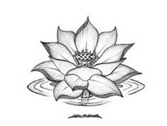 Lotus Flower Drawing- Janet- picture this with the quote I like underneath and the rings of water would be filled in as the colors of my belts as I earn them, ending with my black belt as the last water ring...thoughts???