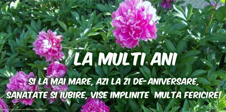 La multi ani! Si la mai mare, azi la zi de-aniversare, sanatate si iubire, vise implinite, multa fericire