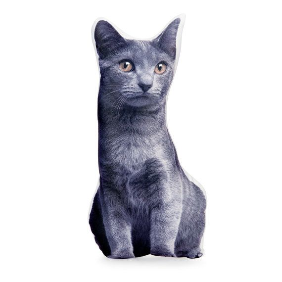 Chartreux cat pillow cat cushion cat cat lover gift