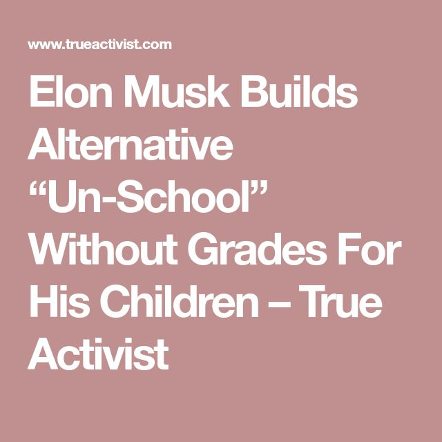 "Elon Musk Builds Alternative ""Un-School"" Without Grades For His Children – True Activist"