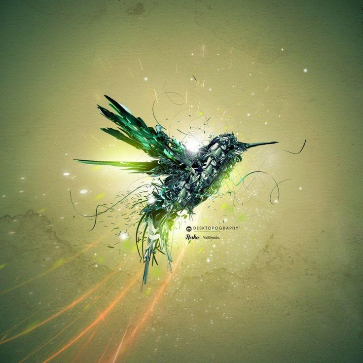 Creative Black Bird HD Wallpapers (20 Wallpapers