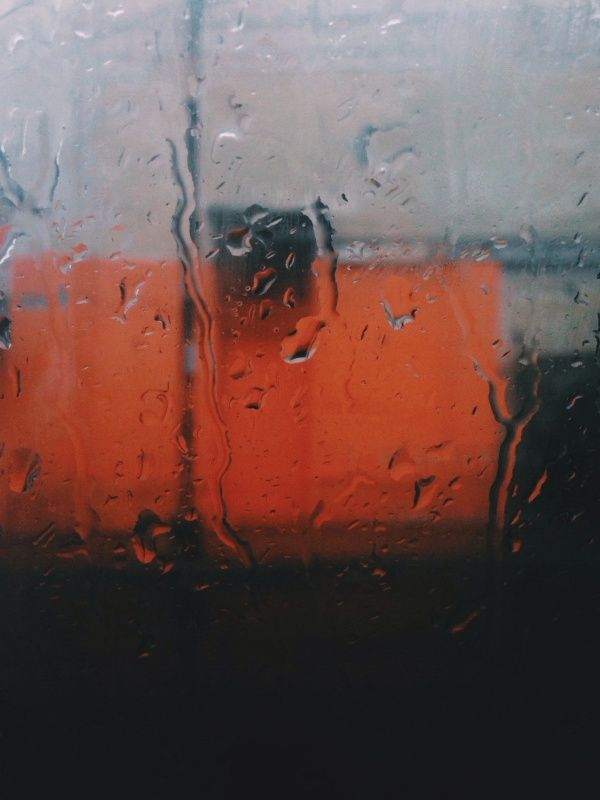 August 9, 2013, 12:56 PM | Carlos Curi | VSCO Grid