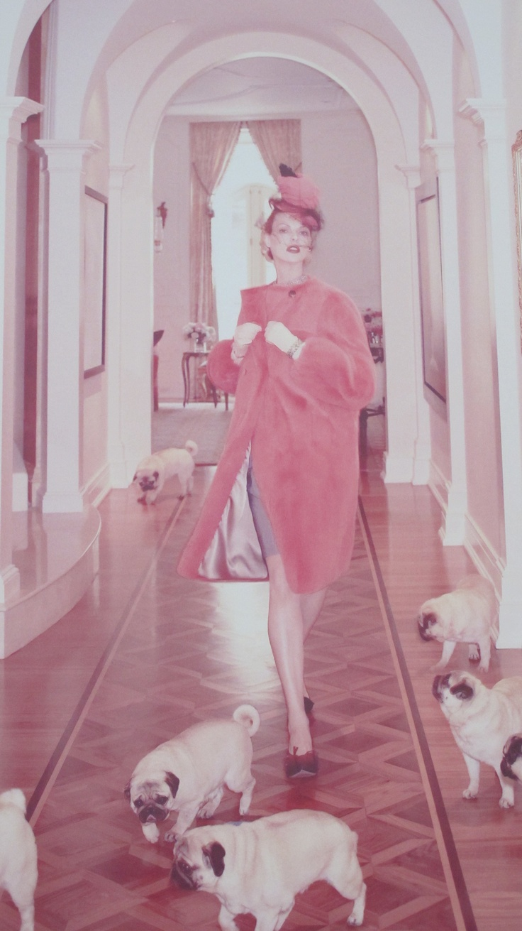 Linda Evangelista with the pugs, from Valentino of course. Couture is a word that is thrown around with abandon.  Valentino is true couture.  Did you know that literally his gowns are sewn by hand ? LIke, hundreds of hours of sewing into one garment. I've heard Linda say her clothing collection is worth more than her home.