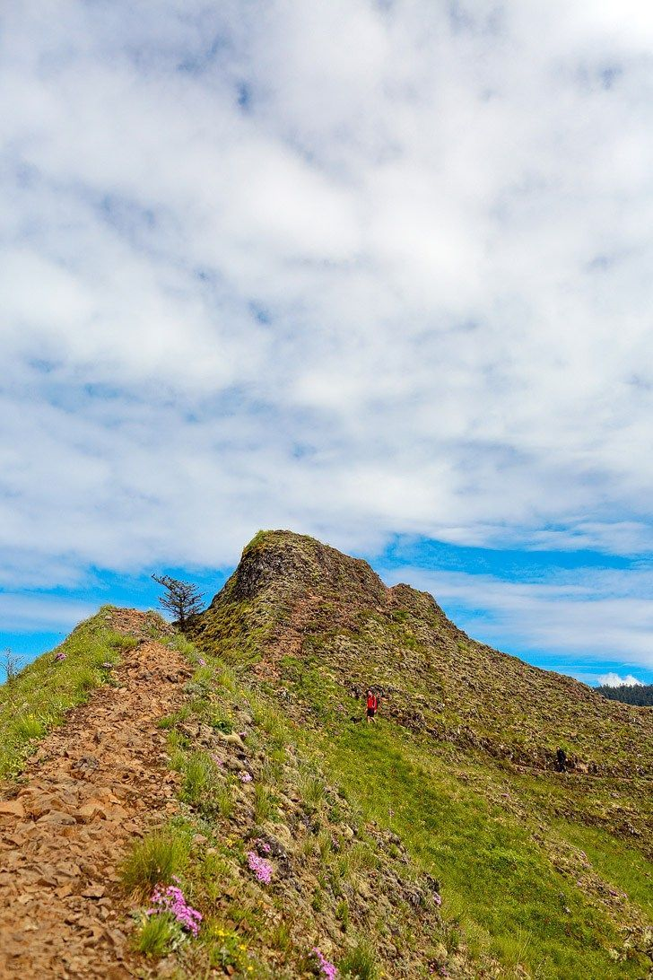 Tips for Hiking to Munra Point Oregon - It's a difficult and thrilling hike but the epic views at the end make it all worth it. #munrapoint #columbiarivergorge #oregon #traveloregon #exploregon #hikes #hiking #greatoutdoors #outdoors // Local Adventurer