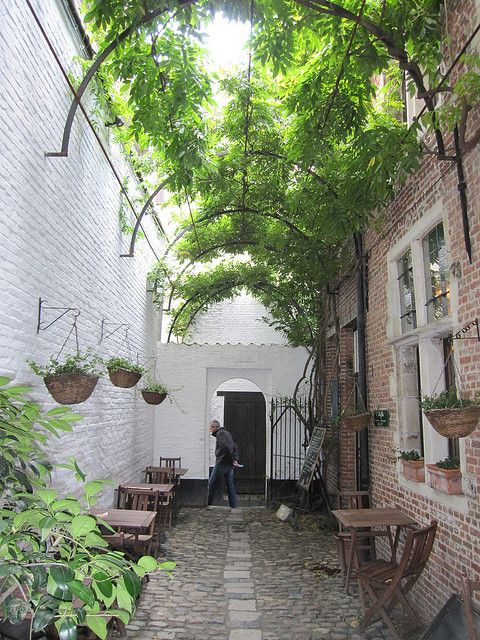 This idea could be used on a side yard that is too narrow for planting trees or large shrubs...make the arbor as high as you like...16th century alley in the town center of Antwerp, Belgium.