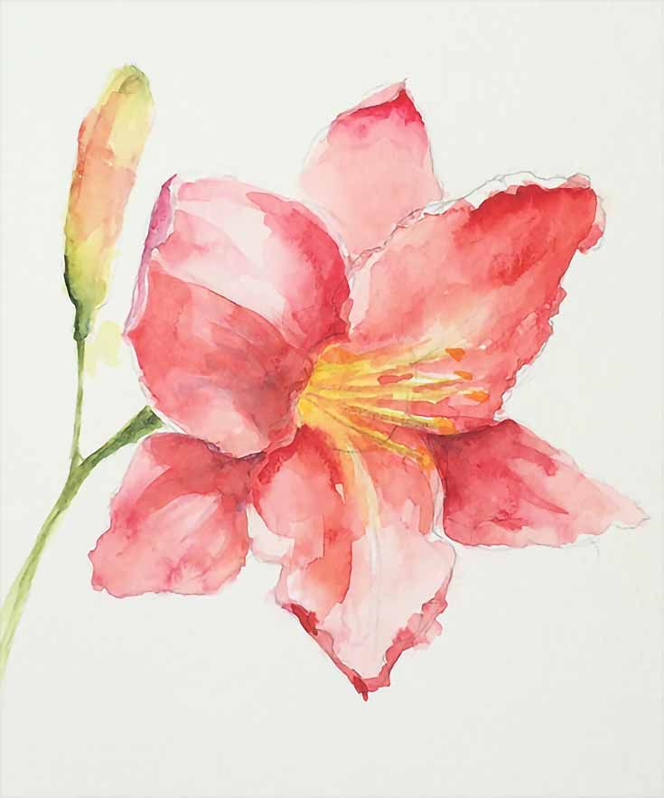 How To Paint Loose Expressive Lilies In Watercolor Peinture