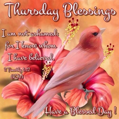 Blessings Quotes: 17 Best Images About Thursday's Good Morning/Blessings On
