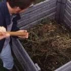 5 steps to fast compost
