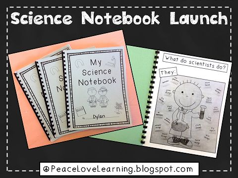 Peace, Love and Learning: Little Scientists, Big Ideas