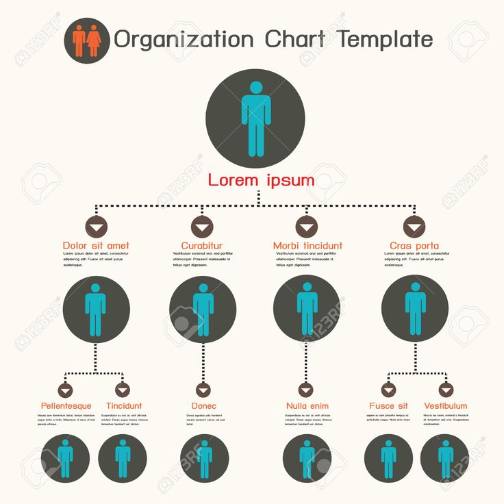 11 best Organizational Chart images on Pinterest Organizational - company organization chart