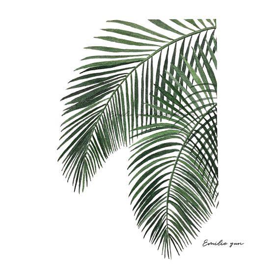 Peinture A L Aquarelle De Fougere Aquarelle Originale De Plante
