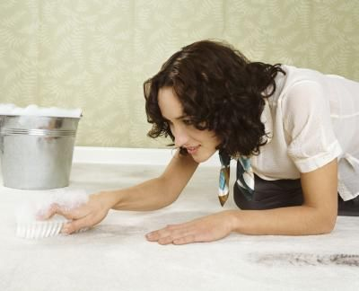 How to Remove Pet Odors in Carpet