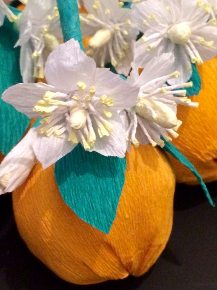 Orange blossom paper flowers