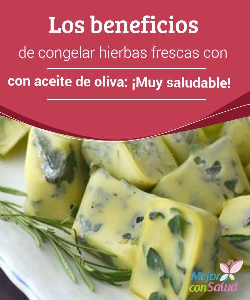 Los beneficios de congelar hierbas frescas con aceite de oliva: ¡Muy saludable!  Las hierbas frescas son un recurso maravilloso en la cocina. A sus propiedades medicinales se le añade, además, su inconfundible sabor, y esa esencia particular que aportan a nuestros guisos y platos cotidianos.
