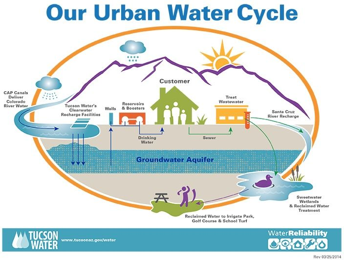 Tucson Water Infographic On Our Urban Water Cycle  Updated
