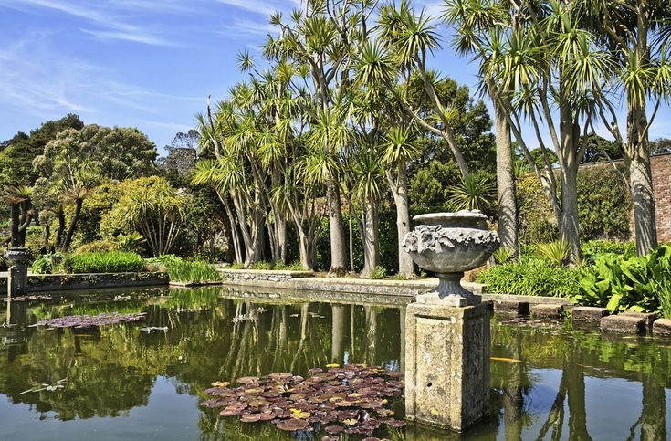 Logan Botanic Garden in Dumfries & Galloway, at the southwestern tip of Scotland. The area is warmed by the Gulf Stream, making it the perfect place to cultivate southern-hemisphere plants like eucalypts, rhododendrons, and Chusan palms.