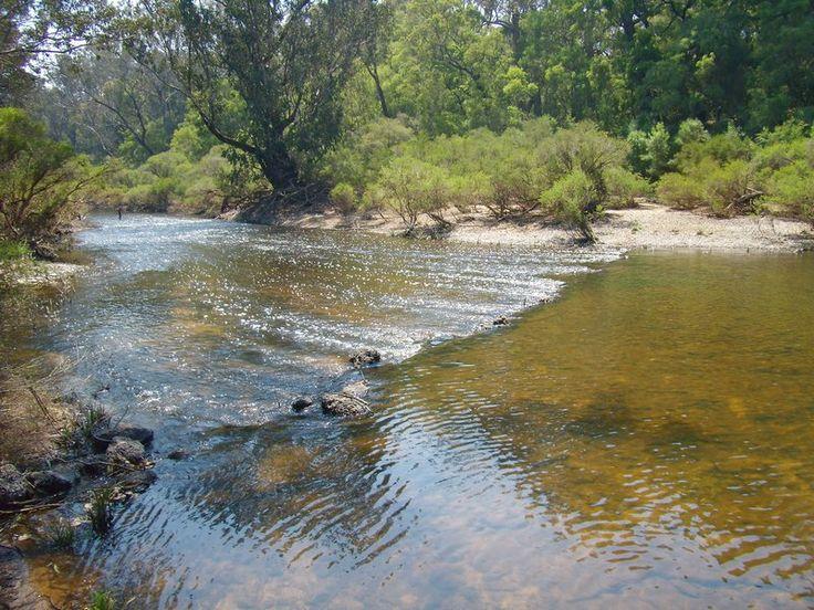 The Blackwood River at Darradup, near the Melrose Farm subdivision. #nannuprealestate #naturallynannup