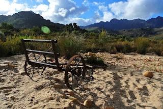 suikerbssie...rusty wagon beween veld...would make a vintage wedding foto