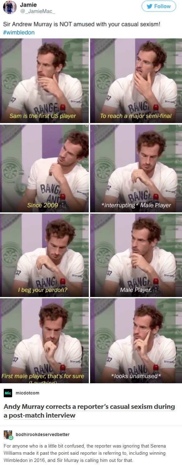 Andy Murray corrects a reporter's casual sexism during a post-match interview. http://narwhal-noir.tumblr.com/post/164106127502/bodhirookdeservedbetter-micdotcom-andy-murray