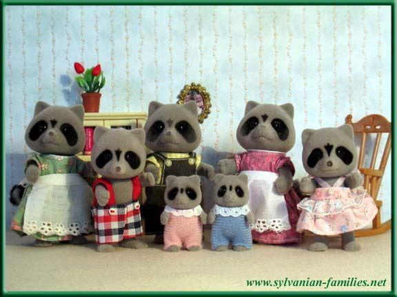Chestnut Raccoon Family