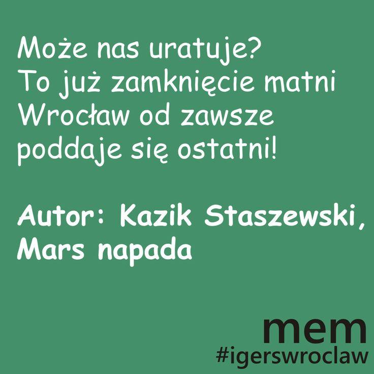 wrocławski MEM #wroclaw #igerswroclaw #mem