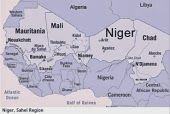 Niger: Another Weak Link in the Sahel?
