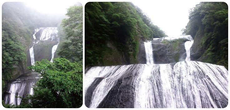 ☆共和AMEL日本の名所☆  茨城県久慈川の支流滝川に架かる袋田の滝。 日本三名瀑に数えられ、高さ120m、幅73mの圧倒的なスケールを誇ります。  西行法師がこう詠んでいます。 「花もみぢ よこたてにして 山姫の 錦織りだす 袋田の滝」  #袋田の滝 #名所 #河津  [共和薬品工業URL] http://www.kyowayakuhin.co.jp/