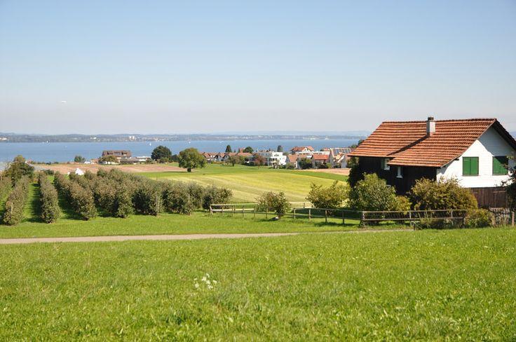 Die Nachfrage nach Wohneigentum und Immobilienanlagen in der Region zwischen den Dörfern Bottighofen und Uttwil ist ungebrochen.