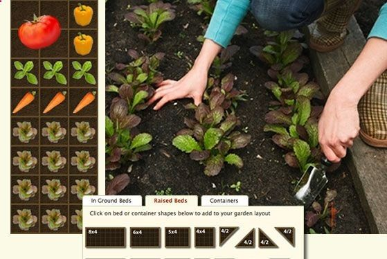 This is a genius website that plans your garden FOR YOU! You tell it where you live, it tells you what to plant and when, designs your garden for you, and gives you daily reminders of what to do.