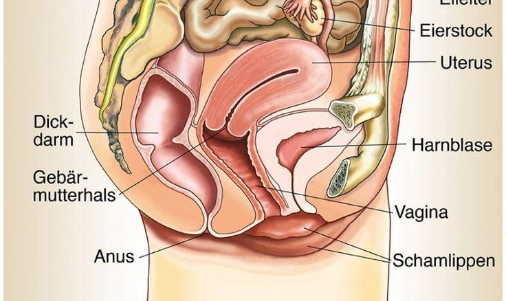 Grafik zu Gebärmutterhalskrebs.