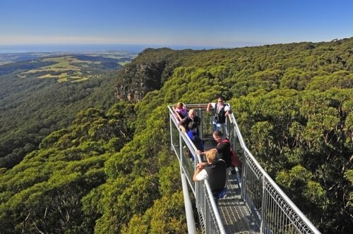 Illawarra Fly Tree Top Walk ... overlooking the rainforest and escarpment ... in the Southern Highlands of NSW, Australia