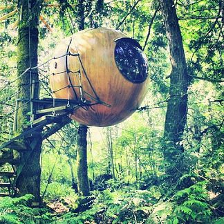 The Free Spirit Spheres on Vancouver Island, Canada | 16 Hotels That Are So Cool You'll Want To Stay Forever