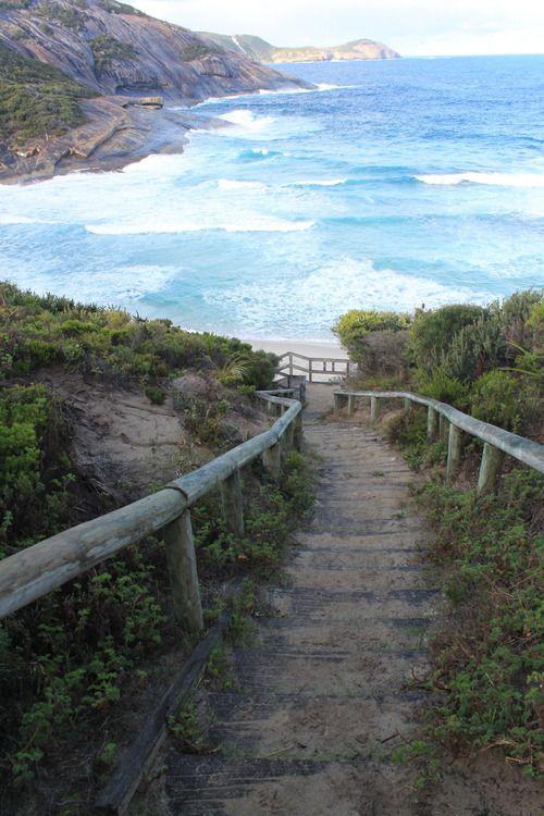 too rocky, Australia, path to Narrabeen beach