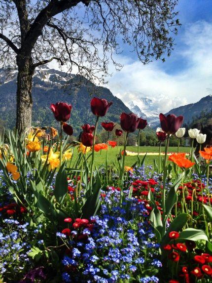 Interlaken Switzerland.