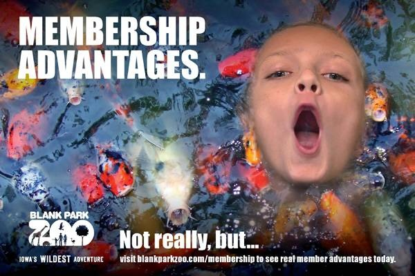 Not really... what your favorite Zoo membership advantage?