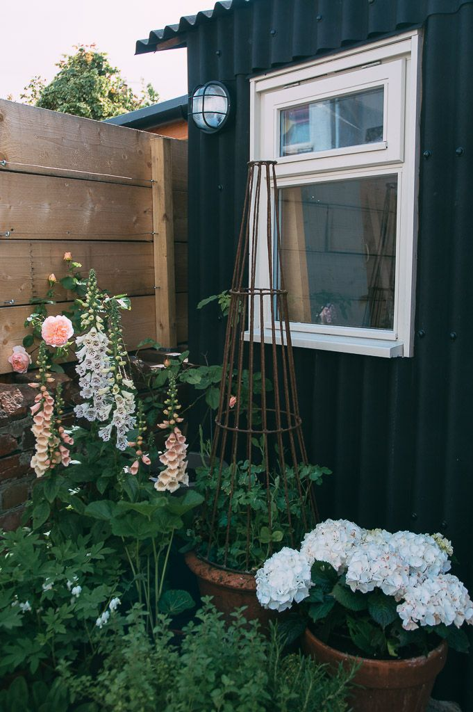 Give your garden a boho vibe by painting your shed black and planting a country cottage garden in front of it.